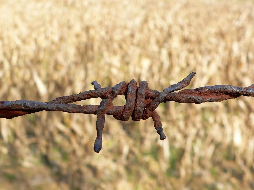#WięźCytuje. Berdychowska: Ofiary, bez względu na narodowość, zasługują na pamięć