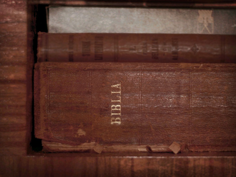 Biblia_Więź
