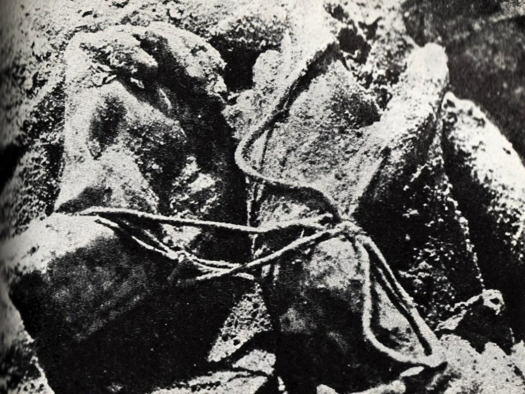 Zdjęcie z 1943 roku z ekshumacji ciał polskich oficerów zamordowanych przez NKWD w Katyniu w 1940