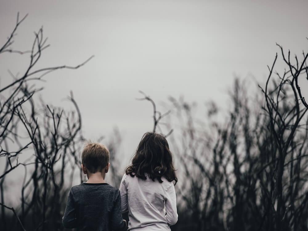 Wykorzystywanie seksualne dzieci. Elementy układanki