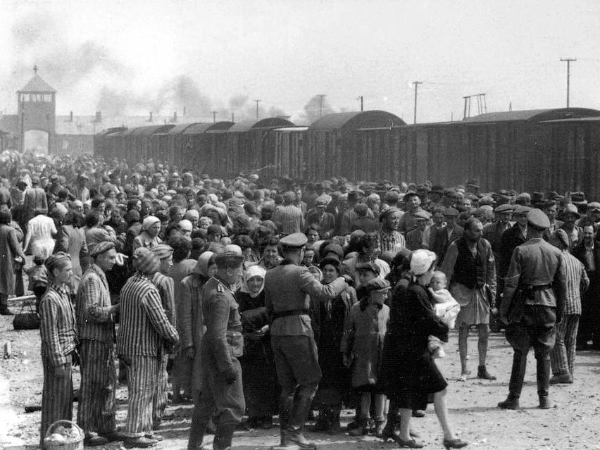 Auschwitz – Europa – Asyż. Czy jest możliwa nadzieja w cieniu krematoriów?