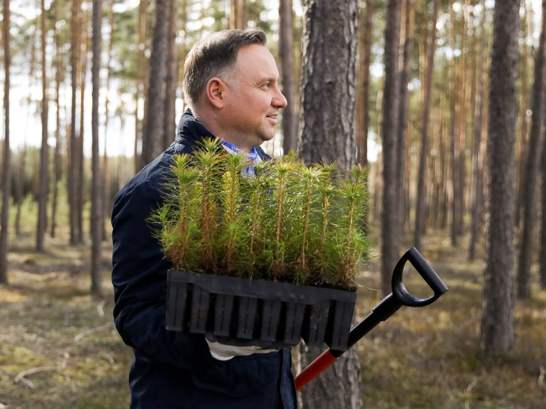 W Światowy Dzień Ziemi, 22 kwietnia 2020 r., w towarzystwie leśniczego leśnictwa Bączki pod Garwolinem prezydent Andrzej Duda dosadzał drzewa na odnowionym zrębie