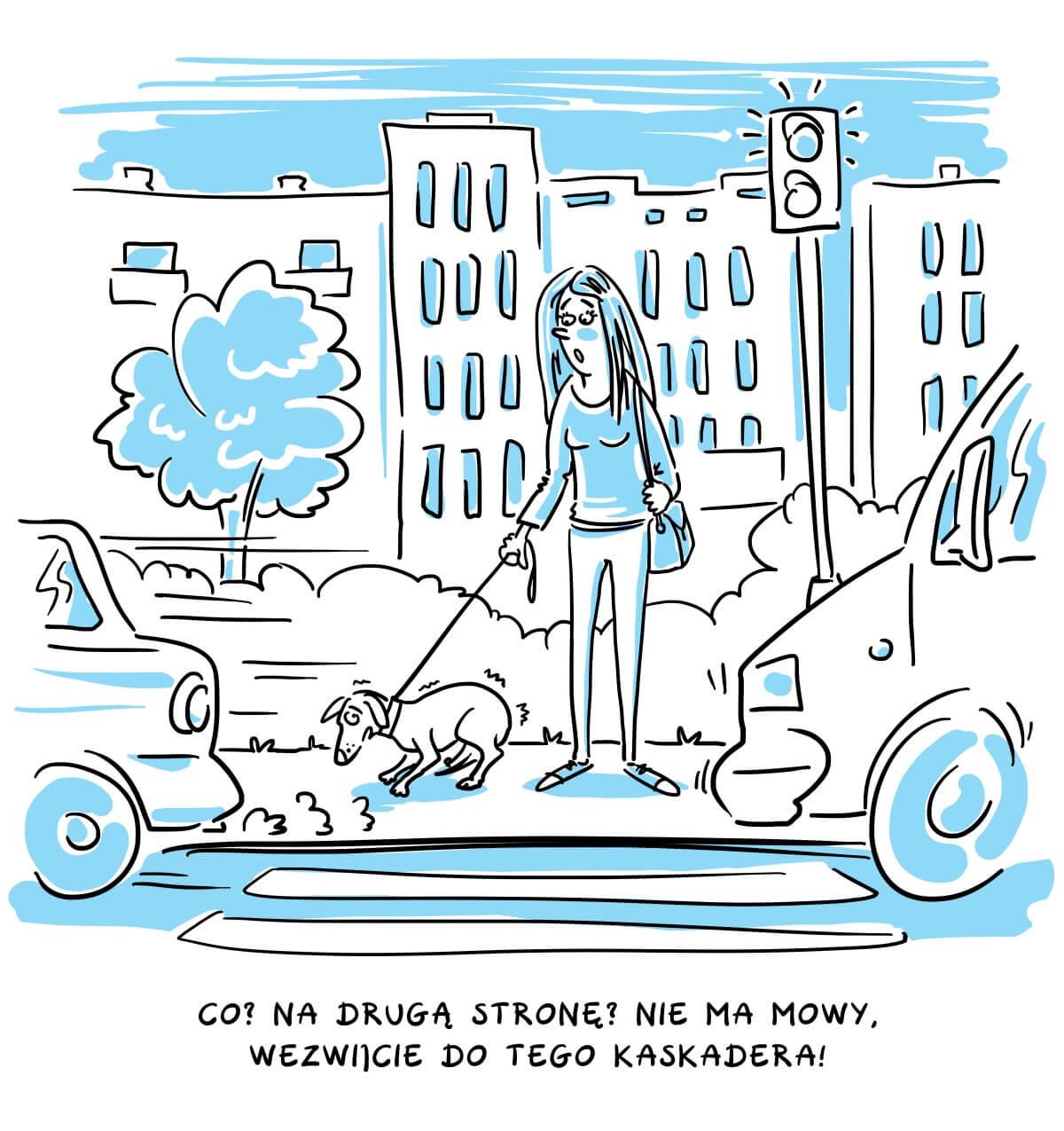 Pies w mieście. Jak wypracować dobre nawyki, by spokojnie żyć z psem w miejskiej dżungli